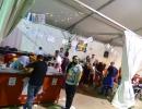 fiestas_barriodelpilar_2016_11