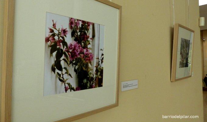 Exposición fotografía Mª José Contreras Centro Cultural Valle-Inclán